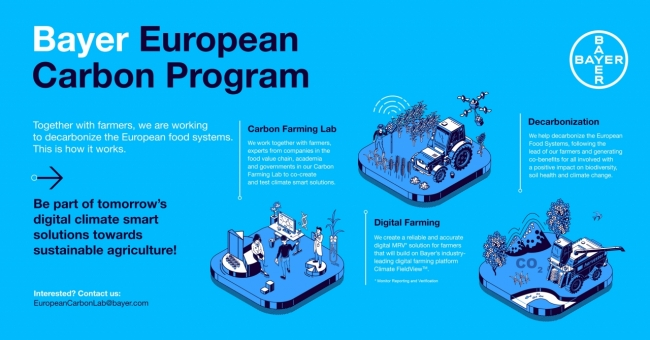 Bayer Infographic