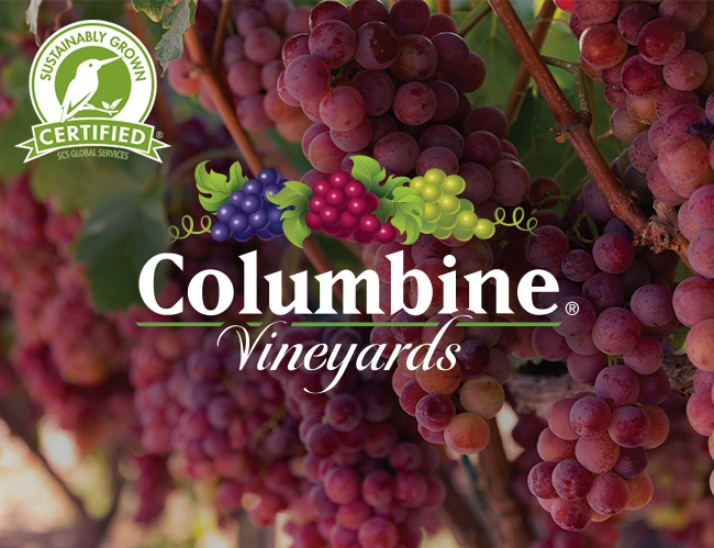 Columbine Vineyards is the first Sustainably Grown Certified Table Grapes Producer in the US