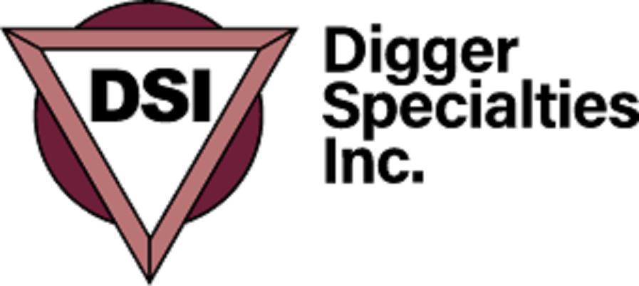 DSI Inc.
