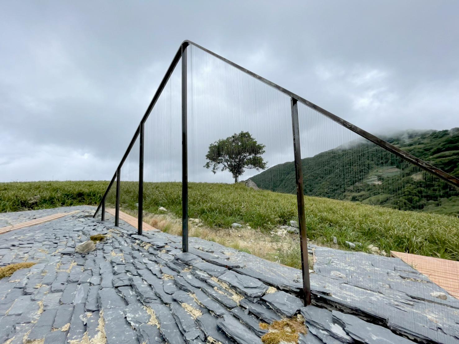 Serendipity Location: Flower field below Wangyou Valley, Jinzhen Mountain Artist: Eric Chen/Taiwan
